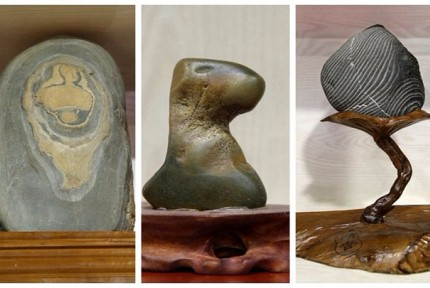奇石展造型各异石趣十足