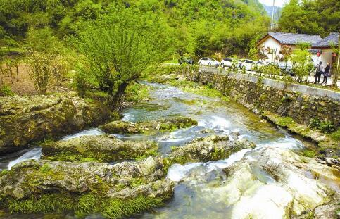 据了解,太和梅花谷风景区位于竹山县文峰乡,是我市唯一一个以梅花为