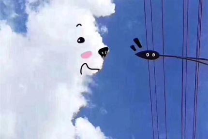 看蓝天白云何必去抖音?十堰的天空照样美