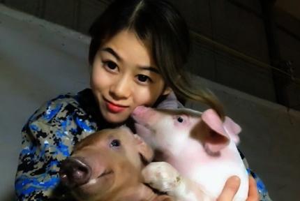 女孩养猪年入百万:曾为400多只猪人工呼吸