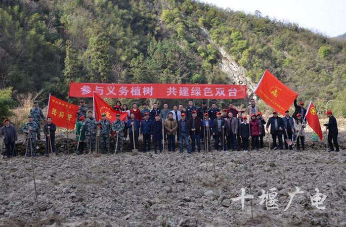 竹山县双台乡:植树造林增绿 共建大美双台