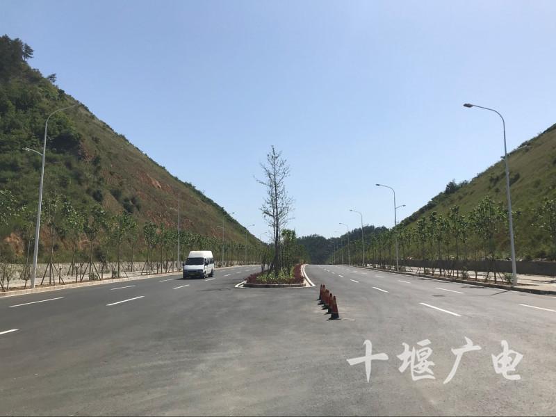 QQ图片20190522124033_副本_副本