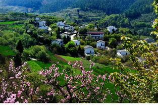郧阳区纳入第二批国家农村产业融合发展示范园