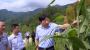 张维国在丹江口市官山镇铁炉村调研脱?#35910;?#22362;和乡村治理工作