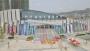 亚博市第六届运动会进入倒计时,开幕式亮点提前曝光