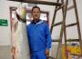 十堰惊现104.4斤野生鰔鱼,比人还高,速围观!