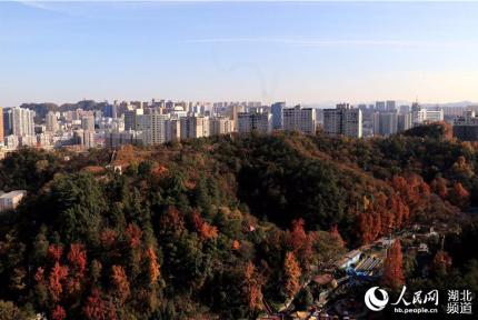十堰城市生態美景入畫來