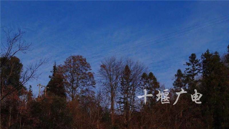 微信图片_20191209092602_副本