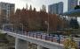 出行方便了!51厂小区便民桥今日开通