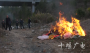 竹山县集中销毁一批野生动物死体和制品