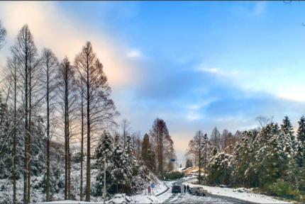 再也不用去东北看雪了 十堰最美雪乡在这里