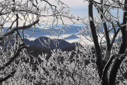 春雨过后,武当山雾凇晶莹剔透美如仙境!
