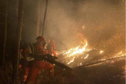 西南多地山火,森林消防出动近1500人