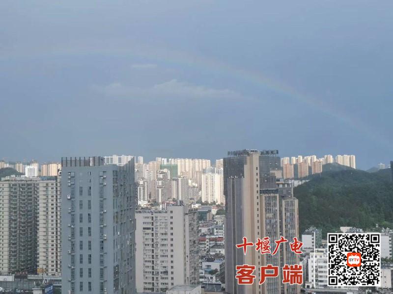QQ图片20200801172919_副本