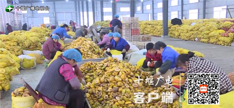 《【杏耀手机客户端登录】奋斗百年路 启航新征程丨全市农产品加工产值年均增长18.8%》