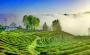 美爆了!竹溪这家景区被授牌成为国家4A景区